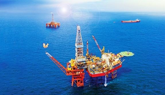 越南石油勘探开采总公司连续10年提前完成全年既定目标 hinh anh 2