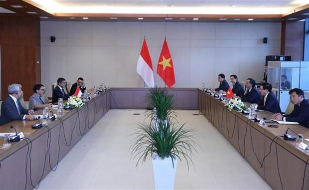 越南政府副总理兼外长范平明同印尼外长举行会谈 hinh anh 2
