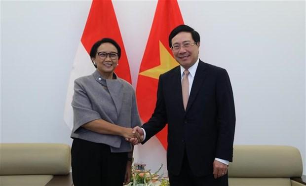 越南政府副总理兼外长范平明同印尼外长举行会谈 hinh anh 1