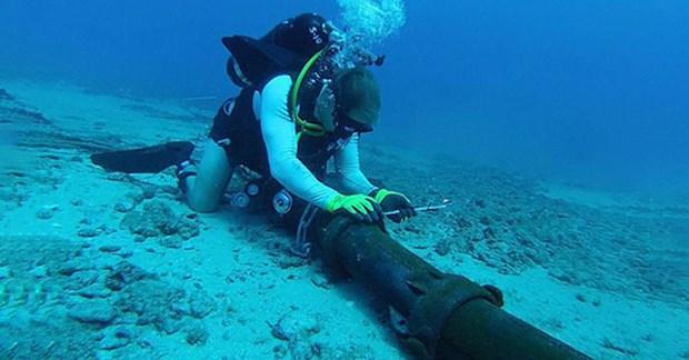 三条海底光纤电缆同时发生故障 越南网速受到极大影响 hinh anh 1