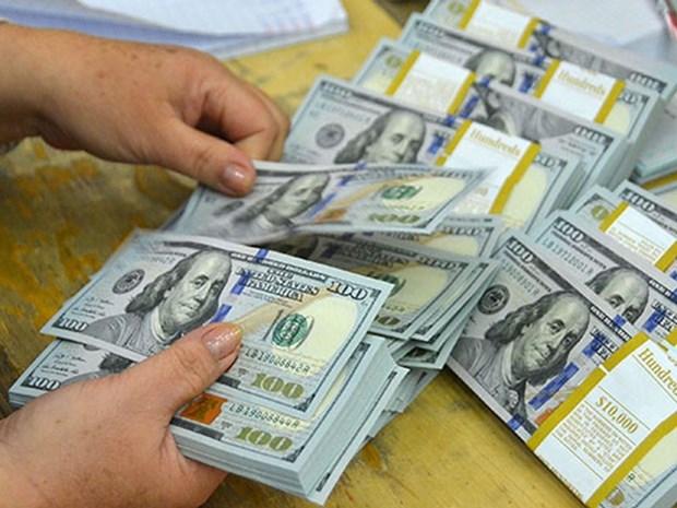 越盾对美元汇率中间价24日上涨5越盾 hinh anh 1