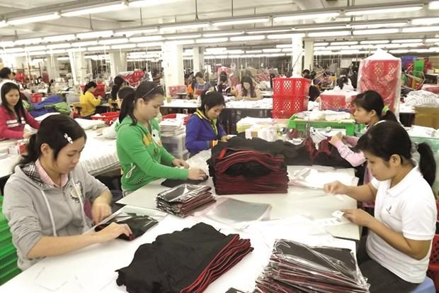 努力推动劳动力市场发展 充分发挥EVFTA协定带来的好处 hinh anh 1