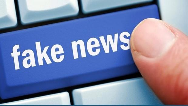 寻找措施打击假新闻、歪曲事实的信息 hinh anh 1