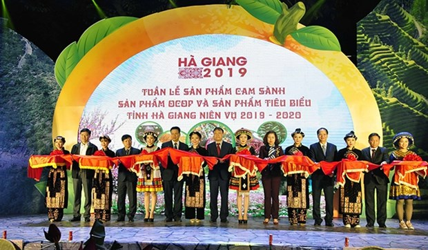 河江省橙子和典型农产品周:推动农产品稳定营销的良好机会 hinh anh 1