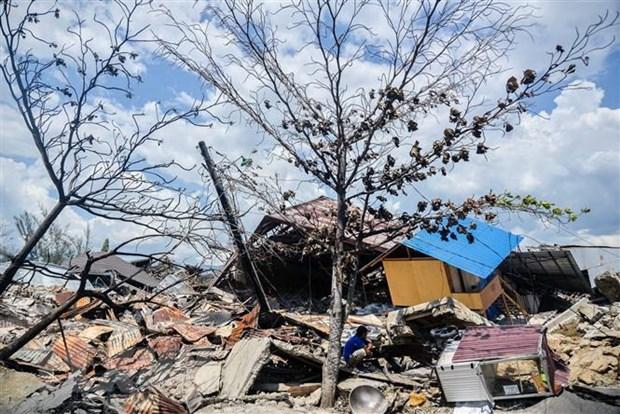 2019年印尼共发生3700起自然灾害 hinh anh 1