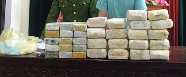 乂安省:查获一起贩卖毒品案 缴获18公斤冰毒和30块海洛因砖 hinh anh 1