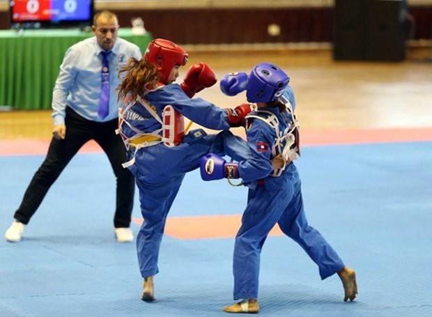 第6届世界越武道锦标赛:越南体育代表团夺18金9银1铜 hinh anh 1