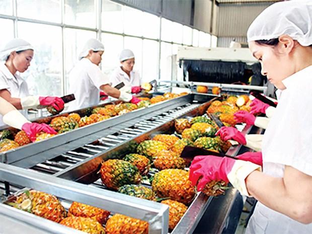 蔬果出口:要在新市场肯定其价值 hinh anh 1