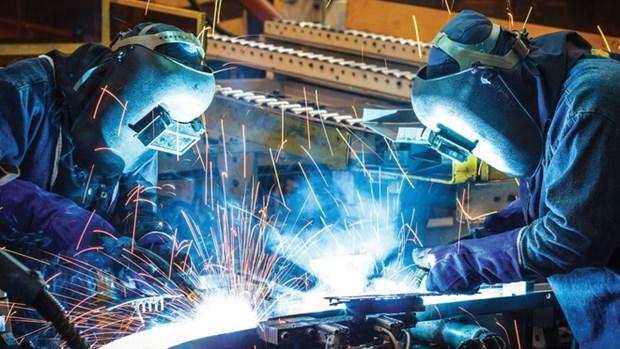 2020年越南经济增长展望 hinh anh 1