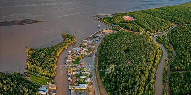 政府总理:九龙江三角洲门户港发展潜力有待挖掘 hinh anh 1