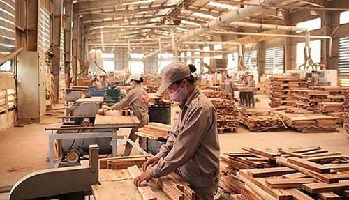 越南林产品和木制品出口位居世界第五 hinh anh 1