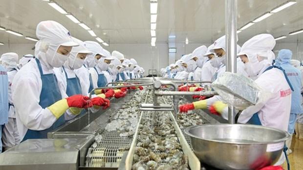 越南力争实现2020年水产品出口额达100亿美元的目标 hinh anh 1