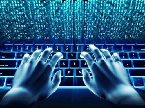 预防和打击因特网的丑恶信息 hinh anh 1