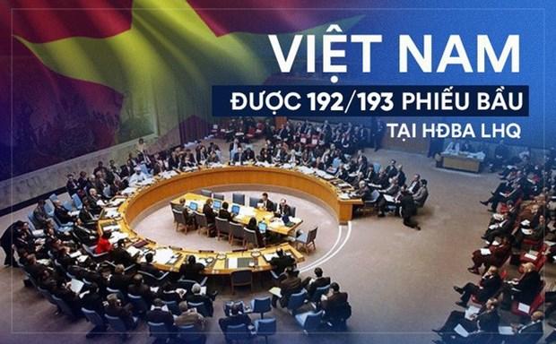2019年对外工作体现了越南的政治本领和地位 hinh anh 1