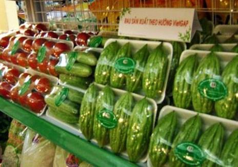 加强对欧盟市场的蔬果出口 hinh anh 1