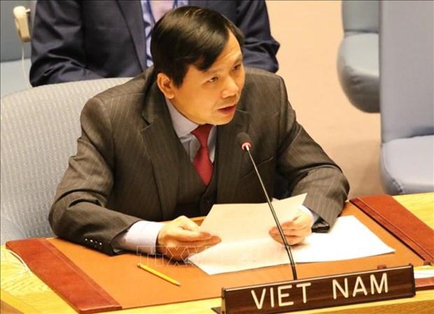 越南为担任联合国安理会非常任理事国职务做好准备 hinh anh 1