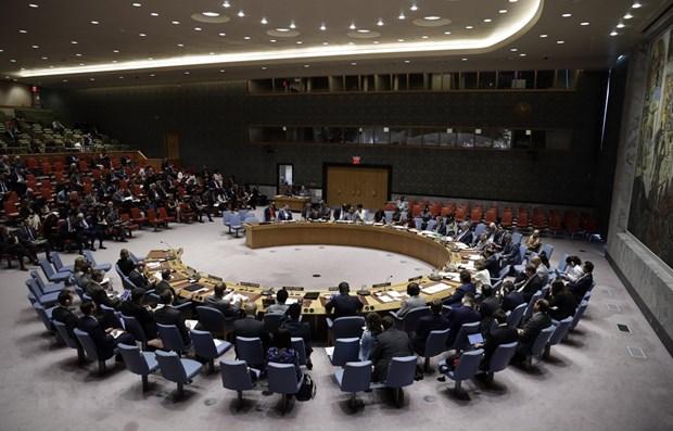 越南重返联合国安理会的第一天就任轮值主席国一职 hinh anh 1