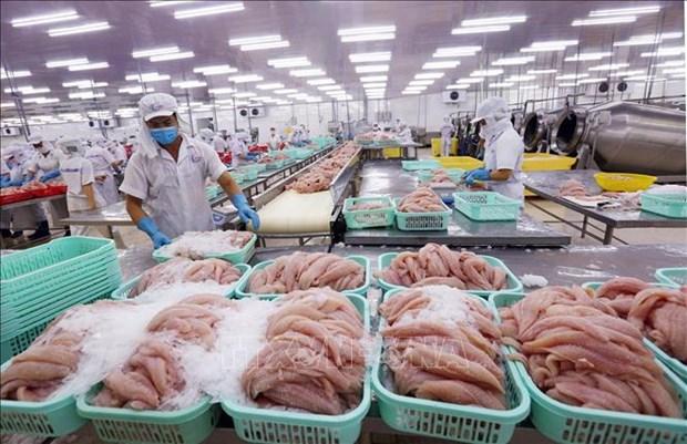 2020年力争实现水产品出口额达100亿美元 hinh anh 1