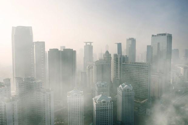 环境污染导致印尼每年23万多人丧命 hinh anh 1