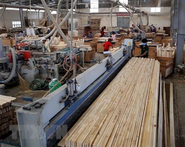 力争实现2020年林产品出口增长10% hinh anh 1