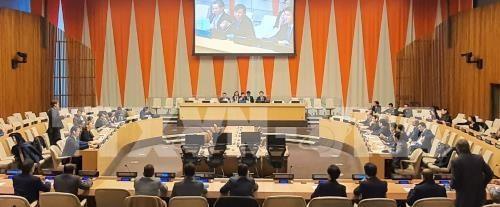 越南正式担任本月联合国安理会轮值主席国 hinh anh 1