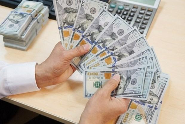1月3日越盾对美元汇率中间价上调7越盾 hinh anh 1