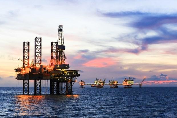 越俄油气联营公司力争2020年营业总额达13.8亿美元的目标 hinh anh 1