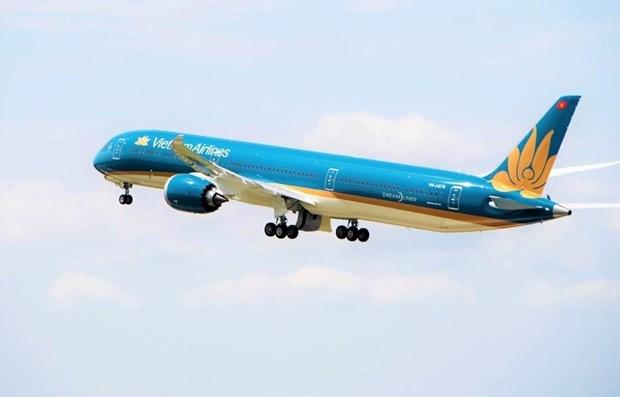 越航与美国达美航空公司建立联营合作 hinh anh 1