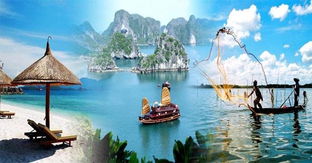 2019年越南旅游业成效显著亮点纷呈 hinh anh 1