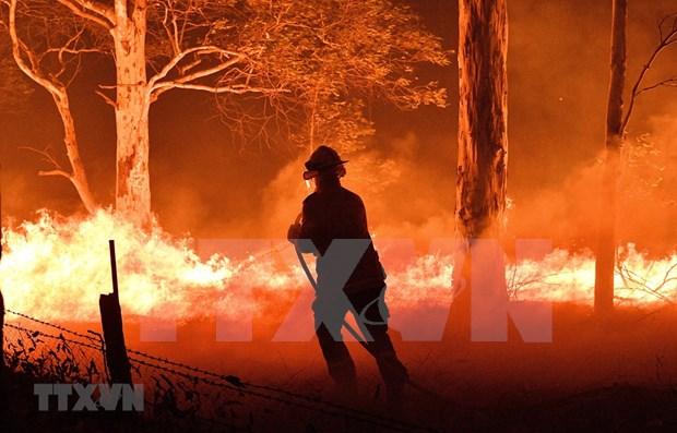 阮春福就澳大利亚严重森林火灾向澳总理致慰问电 hinh anh 1