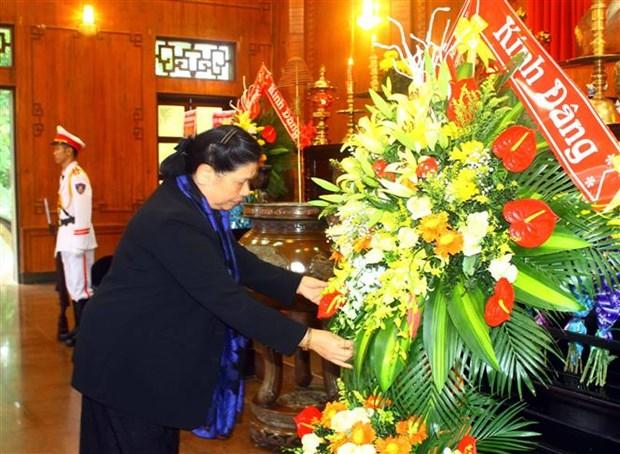 国会副主席从氏放:把乂安建设成为示范省 hinh anh 2