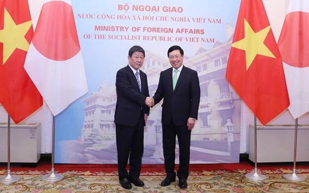 政府副总理兼外长范平明与日本外务省大臣举行会谈 hinh anh 1