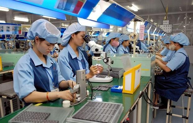 私营企业是越南经济中的一个亮点 hinh anh 1