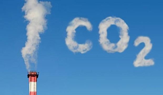 越南努力减少温室气体排放 hinh anh 1
