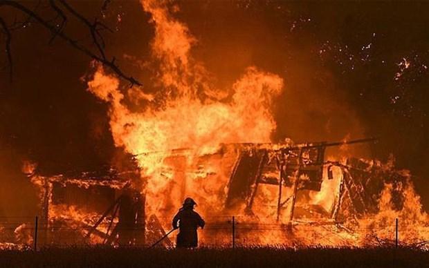 越南驻俄罗斯大使馆证实俄罗斯一处温室大棚种植区发生火灾中有越南人遇难的信息 hinh anh 1