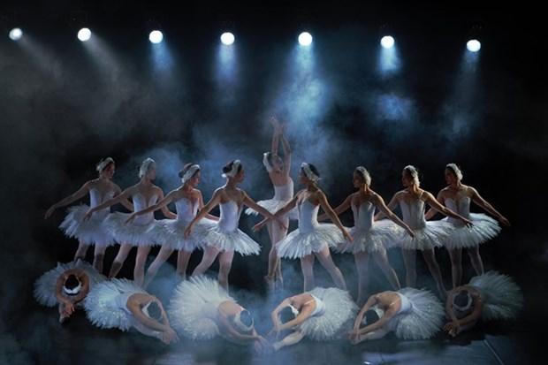 芭蕾舞剧《天鹅湖》即将在室外舞台演出 hinh anh 1