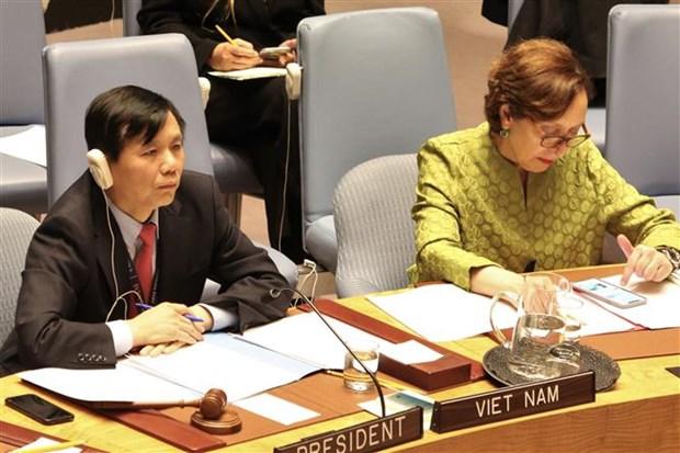 越南主持联合国安理会巩固西非和平会议 hinh anh 2