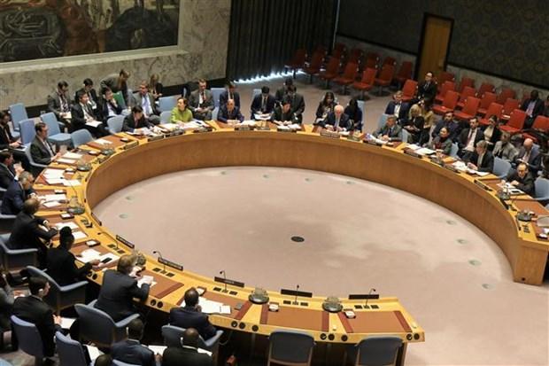 越南主持联合国安理会巩固西非和平会议 hinh anh 1