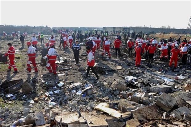 越南就乌克兰国际航空客机在伊朗坠毁事件向有关国家致以深切慰问 hinh anh 1
