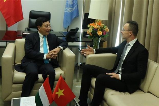 越南与联合国安理会:越南外交部长与各国外长举行会晤 hinh anh 1