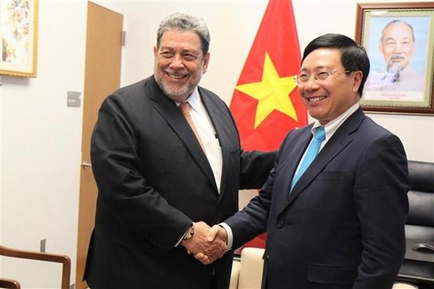 越南与联合国安理会:越南外交部长与各国外长举行会晤 hinh anh 2