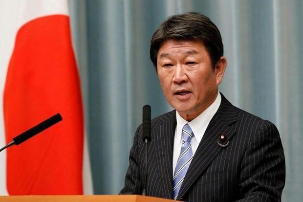 日本强调了东盟在地区的中心作用 hinh anh 1