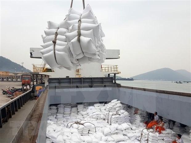 越南同塔省多措并举提升水稻产值 hinh anh 1