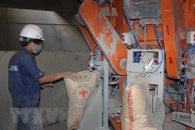 2019年越南出口水泥和熟料连续第二年创下出口纪录 hinh anh 1