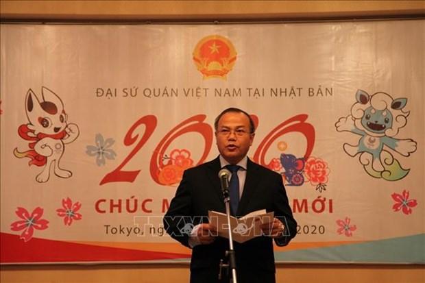 旅外越南人纷纷举行活动 喜迎2020庚子鼠年新春 hinh anh 1