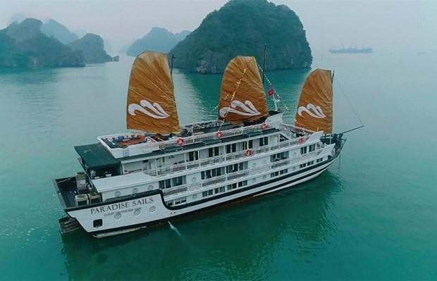 越南天堂集团在下龙湾推出新游轮服务 hinh anh 1