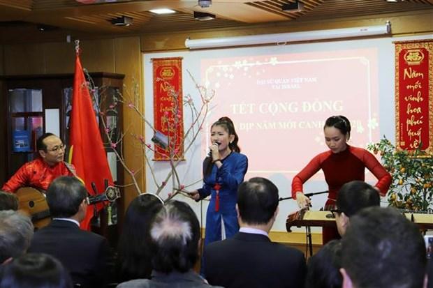 越南驻外使馆纷纷开展迎新春活动 hinh anh 3