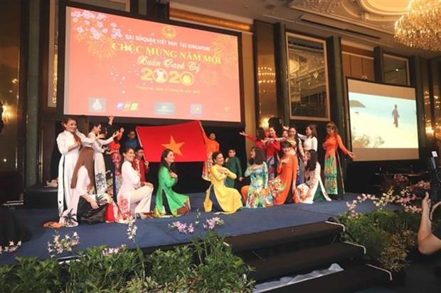 越南驻外使馆纷纷开展迎新春活动 hinh anh 1