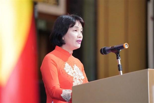 越南驻外使馆纷纷开展迎新春活动 hinh anh 2