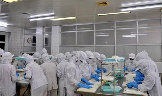 广宁省新增 4家水产企业拥有对华出口资格 hinh anh 1